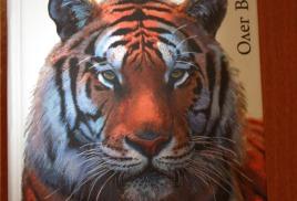 Не только о тигре